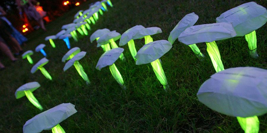 Setas fluorescentes Partylus